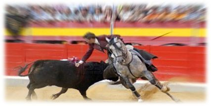 Description: Bull fighting in Spain